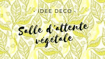 Idée déco cabinet dentaire : une salle d'attente végétale